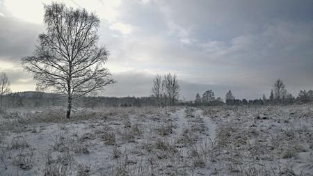 view of view winter landscape, South Bohemia, Czech Republic Reklamní fotografie