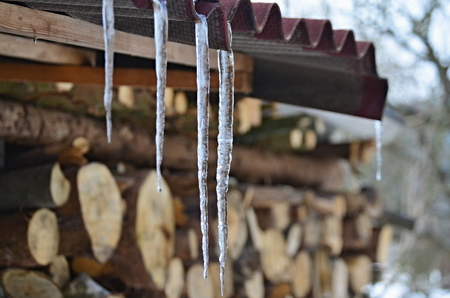Icicles from melting snow, South Bohemia, Czech Republic Foto de archivo - 97950270