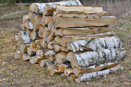 timber ready for transport, South Bohemia, Czech Republic Reklamní fotografie - 99433945