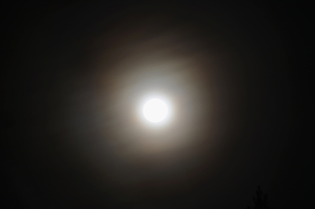 full moon over the forest, South Bohemia, Czech Republic Stock Photo