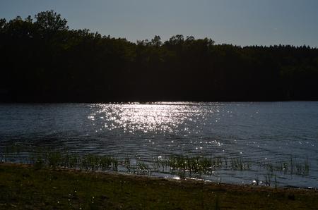 Water level of the lake. South Bohemia, Czech Republic Reklamní fotografie - 101519331