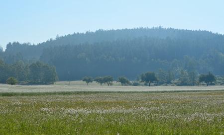 spring landscape, southern Bohemia . Czech Republic Reklamní fotografie - 103549270