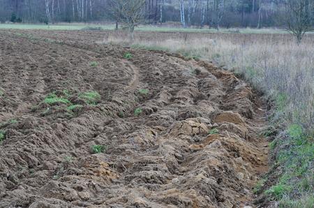 view of autumn undulating fields, south bohemia, czech republic