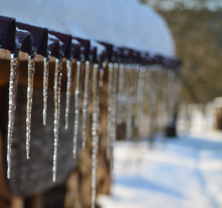 icicles from melting snow, South Bohemia, Czech Republic