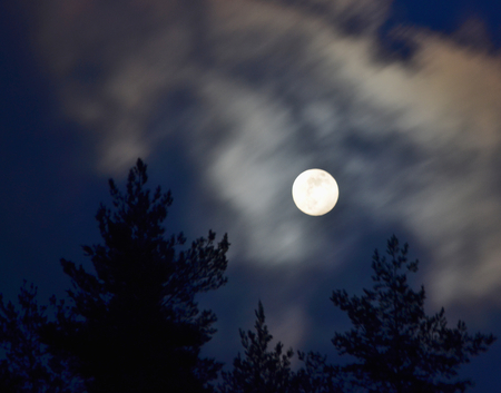 full moon over the forest, South Bohemia, Czech Republic Reklamní fotografie