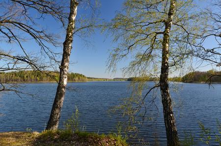 ponds in the countryside, Kaclezsky Pond of South Bohemia, Czech Republic Reklamní fotografie - 124354521
