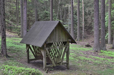 shelter for feeding wildlife, South Bohemia, Czech Republic Reklamní fotografie - 124355643