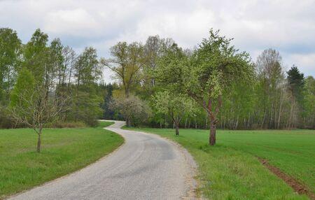 spring landscape, southern Bohemia . Czech Republic Reklamní fotografie - 125367898