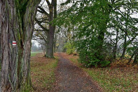 view of autumn nature , southern Bohemia, Czech Republic Reklamní fotografie