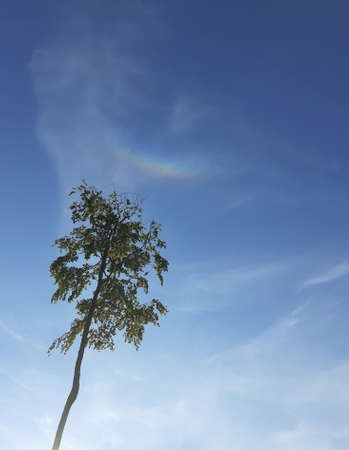 small rainbow in the summer sky, South Bohemia, Czech Republic