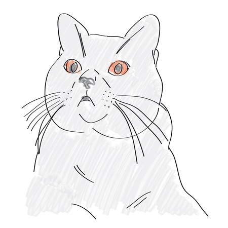 Illustration of British kitten with red eyes. Illustration