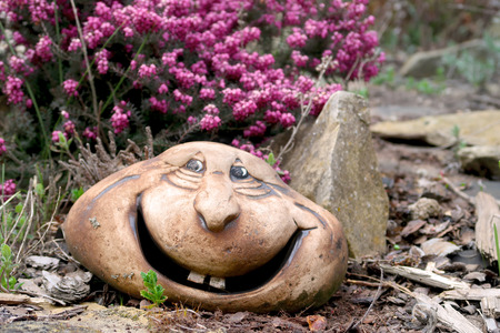 Ceramic statue, smiling head, in the rock garden with blooming Heather (Erica) flower in the background. Springtime in the garden.