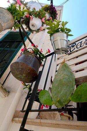 Hanging flower pots with blooming flowers and opuncia cactus flower in the street of Locorotondo town, Italy, Apulia region, Adriatic Sea