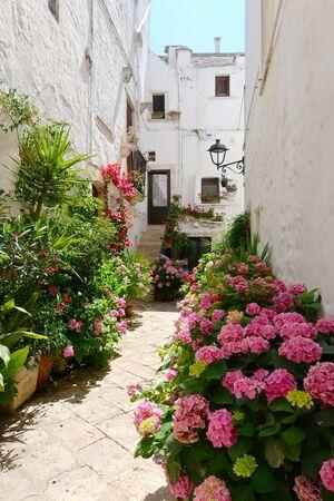 Street full of blooming flowers in Locorotondo town, Italy, region of Apulia, Adriatic Sea
