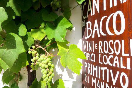 White grapes on the traditional Trulli house in the street of Alberobello city, Italy, Apulia region, Adriatic Sea Stockfoto