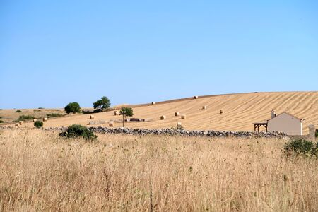 Nature scenery of the countryside near the ancient town of Matera (Sassi di Matera) with rounded hay packs and farmer house on the dry field, Basilicata, southern Italy