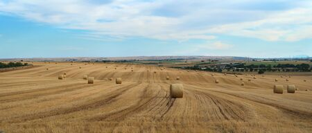 Nature scenery of the countryside near the ancient town of Matera (Sassi di Matera) with rounded hay packs on the dry field, Basilicata, southern Italy