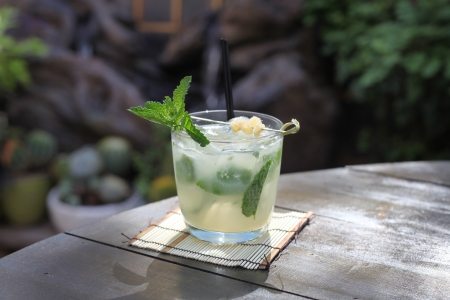 Mojito drink outside rum drink with mint soda pineapple simple syrup specialty cocktail tropical drink