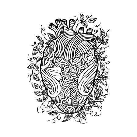 Cuore umano di schizzo di disegno a mano. Vettoriali
