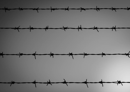 incarcerate: Barbwire shadow isolated in black and white