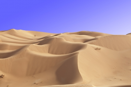 Dunes in the Rub Al Khali Desert Stock Photo - 10756902