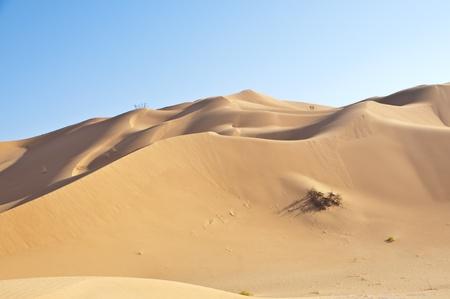 to rub: Dunes in the Rub Al Khali Desert
