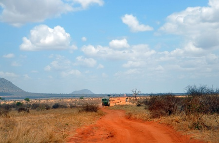 Dusty road in a African national park photo