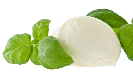 Mozzarella cheese and fresh basil isolated on white photo