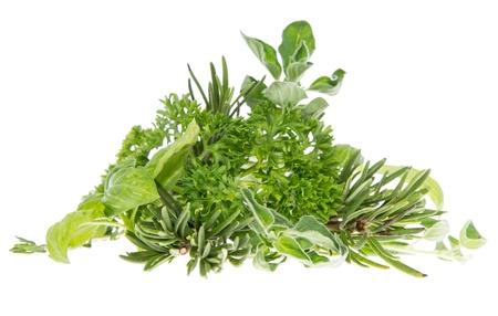 erbe aromatiche: Mucchio di erbe fresche isolato su sfondo bianco