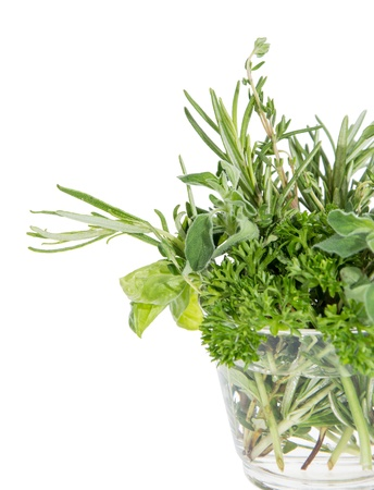Different Herbs in a glass isolated on white background Stock Photo - 14773937