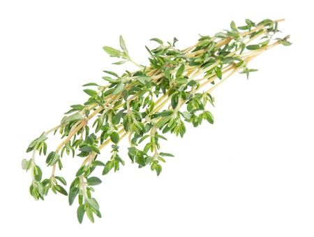 Thyme isolated on white background Stock Photo - 14773925
