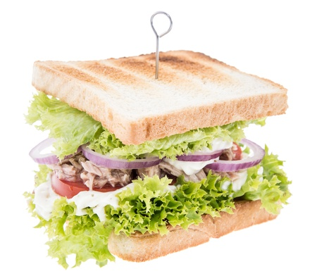 Tuna Sandwich isolated on white background photo