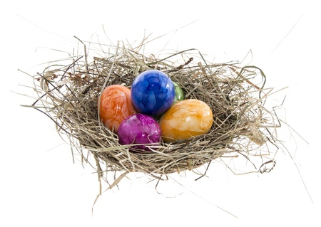 Nest with Easter Eggs isolated on white background photo