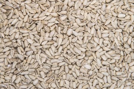sunflower seed: Roasted Sunflower Seeds background image