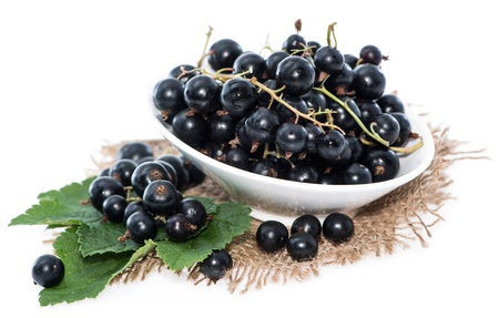 black currants: Isolated Black Currants (on white background)