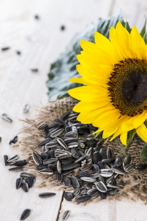 Portion of fresh Sunflower Seeds on wooden background photo