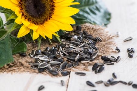 semillas de girasol: Parte de las semillas de girasol sobre fondo de madera