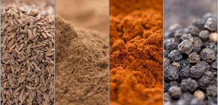 Collage of different spices (Caraway, Cinnamon, Paprika Powder and Black Pepper) photo
