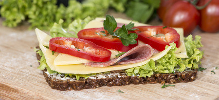 appetize: Fresh made Salami Sandwich with Cheese