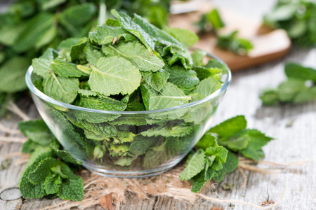 mint leaves: Small Portion of fresh green Mint Leaves