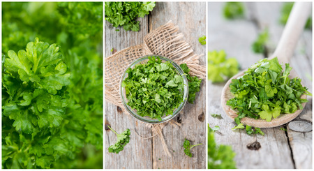 Fresh Parsley stylish collage with different close-up shots photo