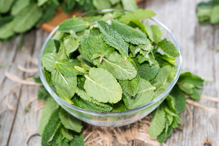 mint leaves: Bowl filled with fresh Mint Leaves (close-up shot)