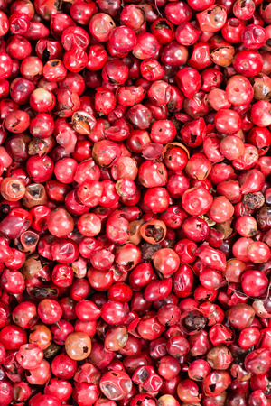 Pink Peppercorns (macro shot) for use as background image or as texture photo
