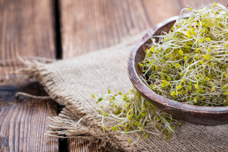broccoli sprouts: Some fresh Broccoli Sprouts (close-up shot) on rustic wooden background
