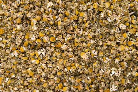 chamomilla: Dried Camomile (close-up shot) for use as background image or as texture Stock Photo
