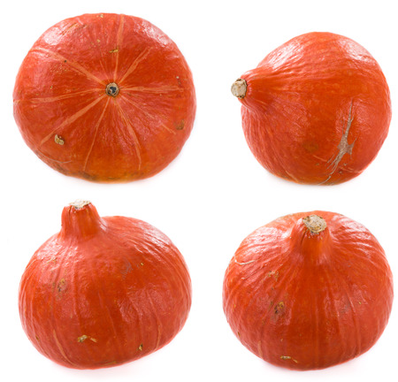 merged: Different isolated Pumpkins merged on one image (close-up shots)