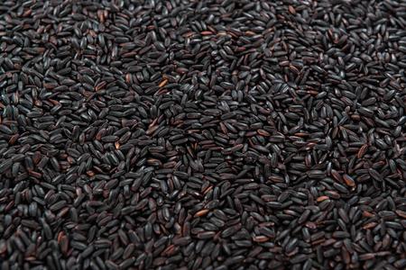 Porción de Arroz Negro (para su uso como imagen de fondo o como textura) Foto de archivo - 52189454
