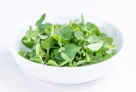 oregano plant: Fresh Oregano (selective focus; close-up shot) on white background Stock Photo