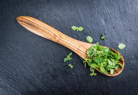 oregano plant: Fresh Oregano (on a slate slab) as detailed close-up shot (selective focus)