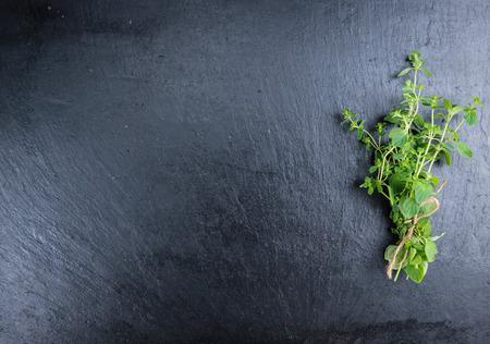 oregano plant: Slate Slab with fresh Oregano (selective focus, close-up shot)